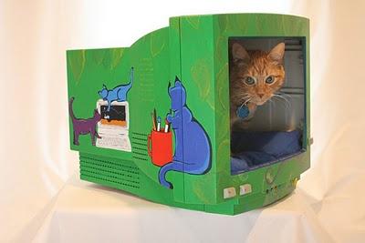 monitor-de-gato-1
