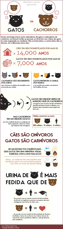 gatosvscachorros1