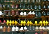Eu quero um sapato amarelo!