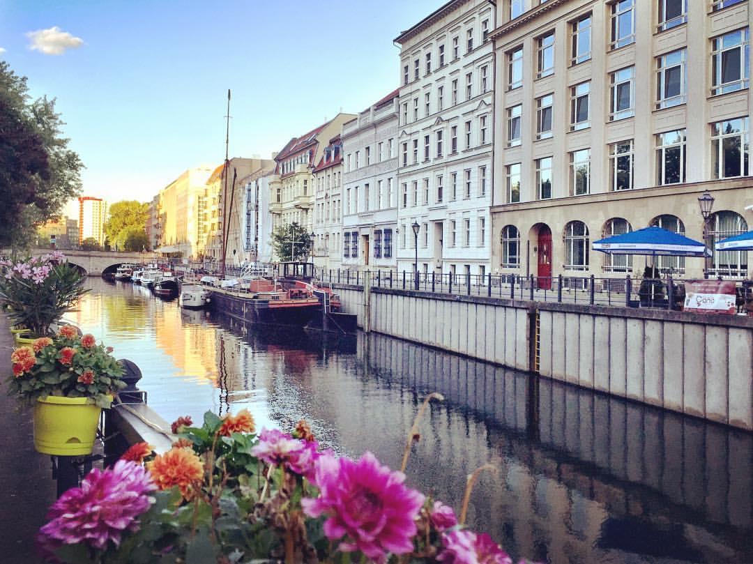 10. Parece cena de filme, mas é meu caminho para o supermercado... #paracegover A imagem mostra um canal do rio Spree visto de uma das margens, em diagonal. Em primeiro plano, aparecem flores. Em segundo plano, prédios e barcos na sombra. Bem ao fundo, o amarelo da luz do sol se reflete nos prédios e na água (Fischerinsel).