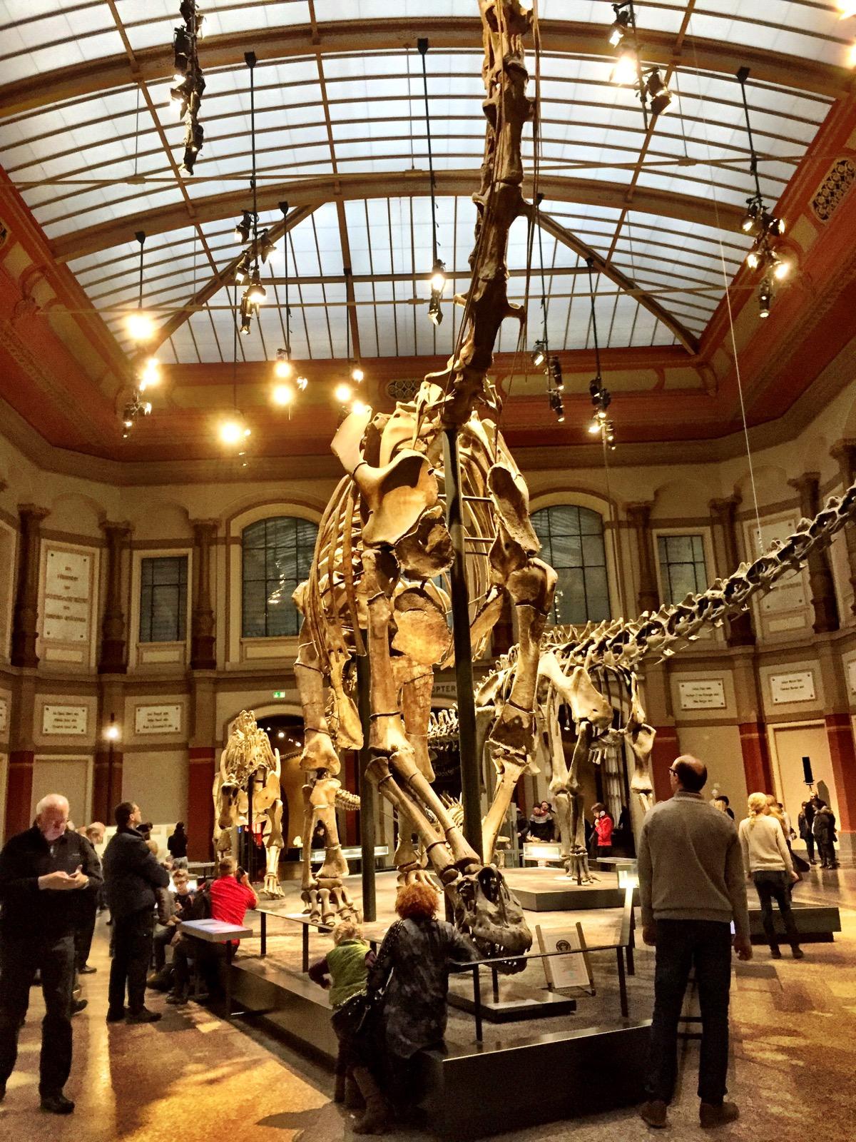 Esqueletos de vários dinossauros, com um maior em destaque, no centro.