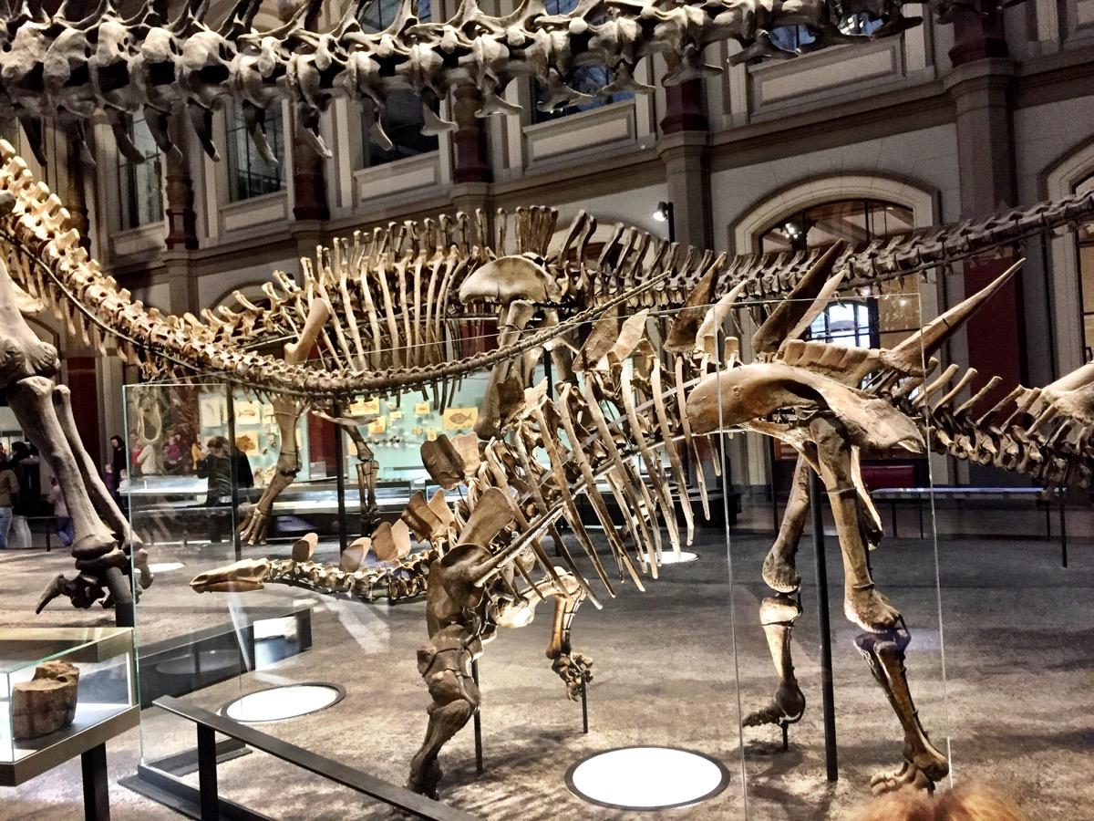Em destaque, um dinossauro menor, com cabeça bem pequena em relação ao tamanho do corpo.