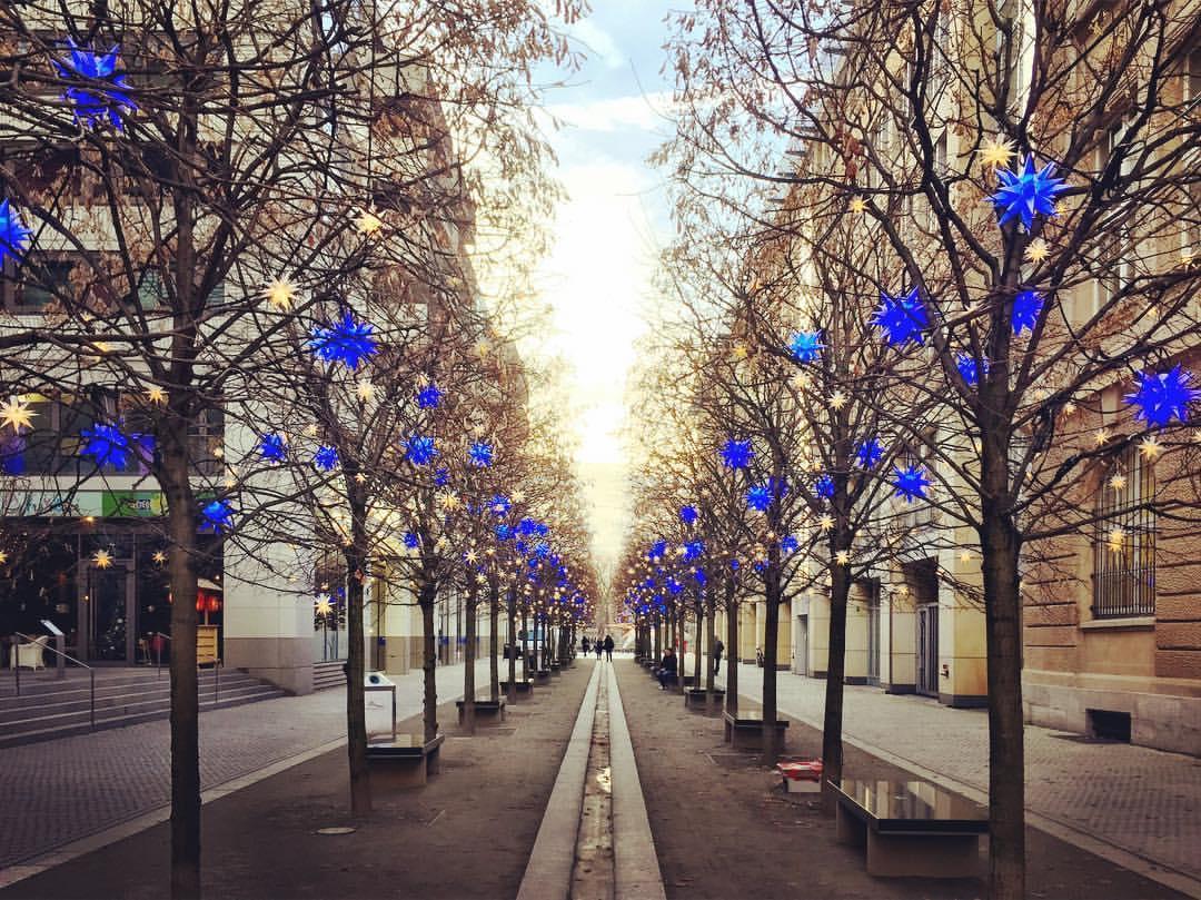#paracegover A imagem mostra uma passagem para pedestres ladeada por árvores, que, já sem nenhuma folha, estão decoradas com estrelas nas cores branca (que não aparecem muito bem por causa da luz) e azul-violeta. O efeito é maravilhoso. — at Berlin Mitte.