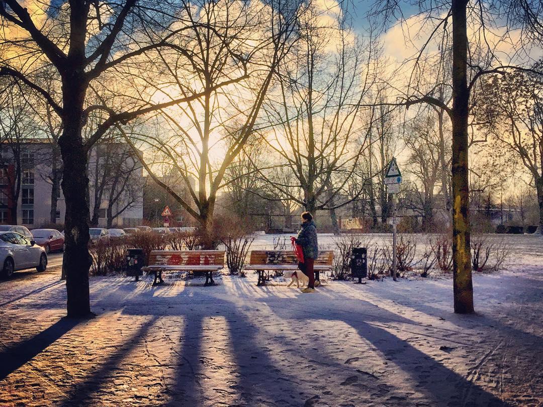 Descrição para deficientes visuais: a imagem mostra uma pessoa caminhando por um parque cujo chão está coberto de neve. A luz do sol penetra por entre os galhos secos das árvores formando sombras. — at Berlin Alte jakobstrasse.