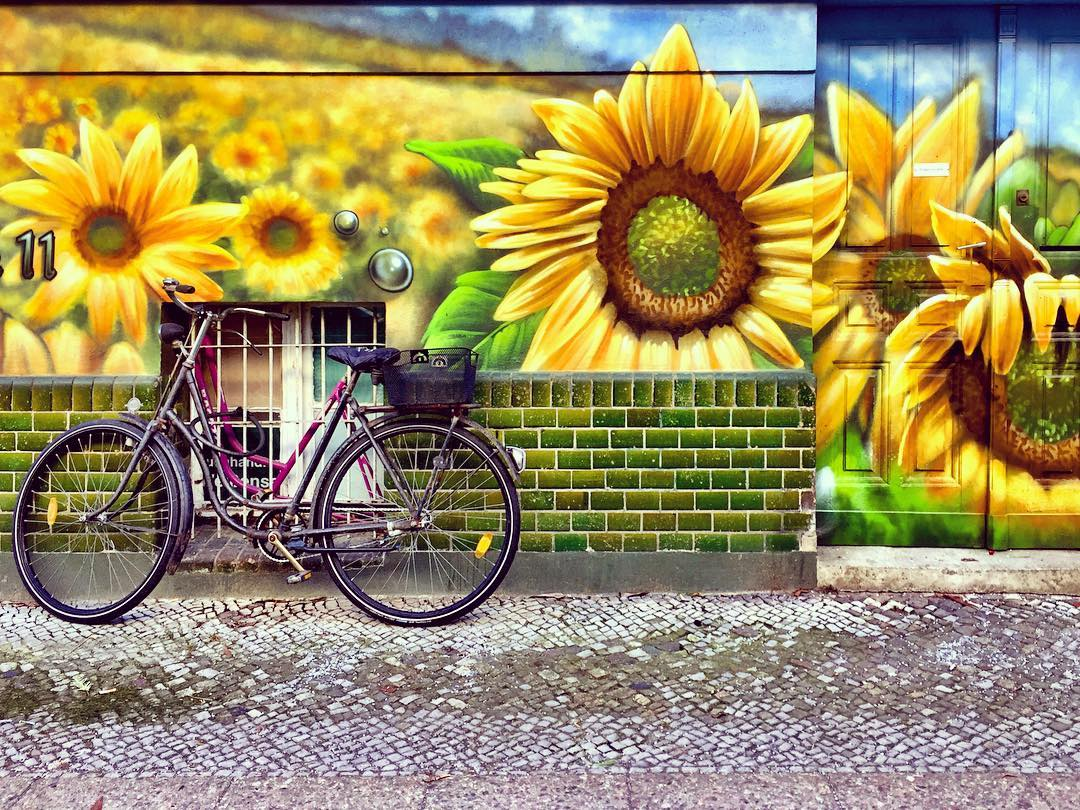 #paracegover Descrição para deficientes visuais: a imagem mostra uma bicicleta encostada em uma parede cuja metade inferior é revestida de cerâmica verde musgo e a parte de cima estampada com grafite hiperrealista representando girassóis gigantes. A despeito das temperaturas negativas, nessa fachada é sempre primavera... — at Berlin Hiddenseerstrasse.