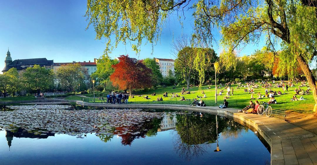 #paracegover Descrição para deficientes visuais: a imagem mostra a vista panorâmica de um parque onde as pessoas estão todas lagarteando no gramado ao sol da primavera. O dia está maravilhoso e a cena é refletida no lago cheio de nenúfares. — at Volkspark am Weinberg.