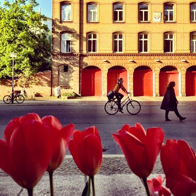 #paracegover Descrição para deficientes visuais: a imagem mostra as silhuetas de uma ciclista e uma mulher de capa escura caminhando sobre uma rua. Ao fundo, um prédio amarelo com portas vermelhas. Em primeiro plano, tulipas encarnadas. — at Oderberger Straße.