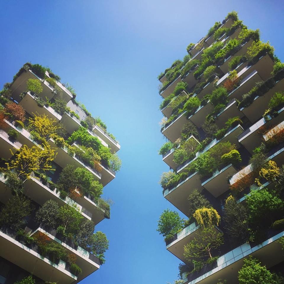 #paracegover Descrição para deficientes visuais: a imagem mostra dois prédios do Bosque Vertical, construídos para serem jardins suspensos. As sacadas possuem nichos para encaixar árvores e plantas diversas. Sob o céu azul, é lindo demais!