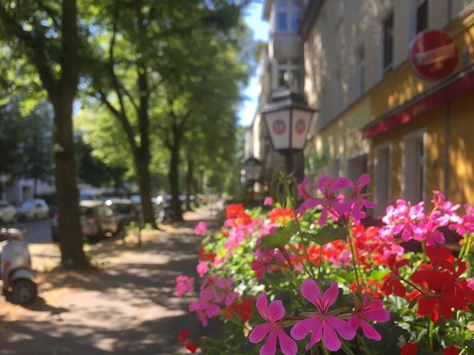 #paracegover Descrição para deficientes visuais: a imagem mostra uma rua bem arborizada e sua calçada larga, como a maioria na cidade. No canto esquerdo há uma Vespa estacionada. No canto direito, em primeiro plano, uma floreira transbordando de cores. — in Weißensee.