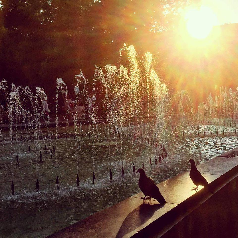 """#paracegover Descrição para deficientes visuais: a imagem mostra a silhueta de dois pombos na mureta de um chafariz. O sol, já se despedindo, faz tudo ficar dourado. — at НАРОДЕН ТЕАТЪР """"ИВАН ВАЗОВ""""."""