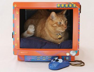 monitor-de-gato-3