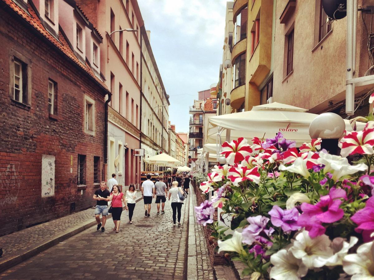A imagem mostra pessoas caminhando em uma rua para pedestres; no canto direito, um vaso de flores.