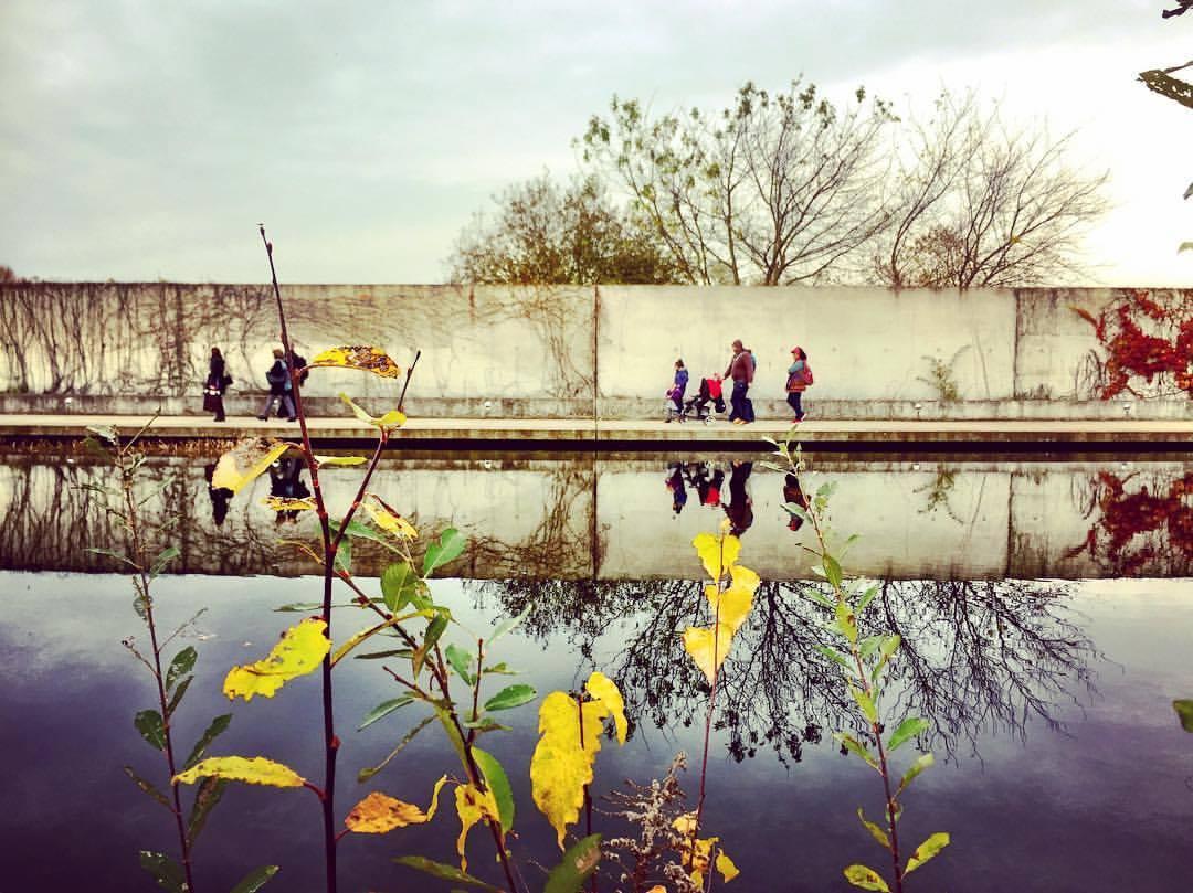 #paracegover Descrição para deficientes visuais: a imagem mostra pessoas caminhando em frente a um muro. Na frente, há um lago que reflete a cena. Em primeiro plano, as últimas folhas amarelas sobreviventes da densa vegetação se exibem, desafiadoras. O dia está nublado. — at Tierheim Hohenschönhausen.