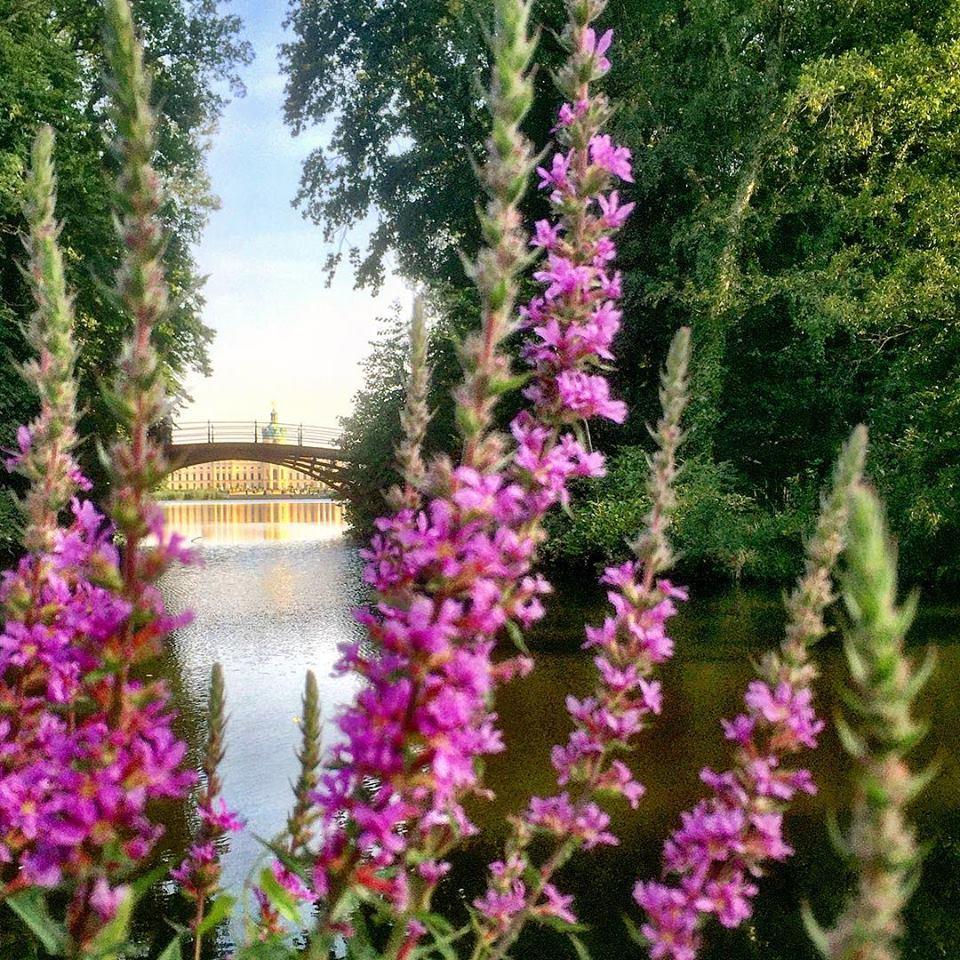 #paracegover Descrição para deficientes visuais: a imagem mostra o Castelo de Charlottenburg ao longe, visto por entre as flores e lagos do seu jardim. — at Charlottenburg Palace, Charlottenburg West Berlin.