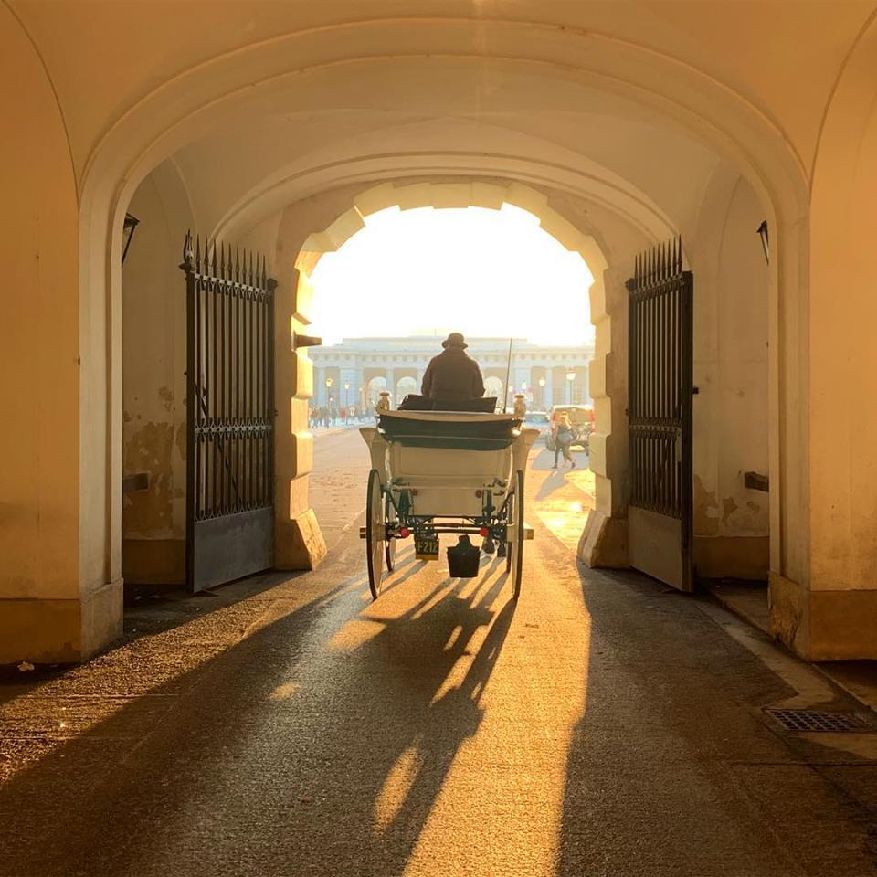 #paracegover Descrição para deficientes visuais: a imagem mostra uma carruagem vista de costas em uma das muitas passagens do Palácio de Hofsburg. O sol que vem da rua, faz tudo ficar dourado. No fim do túnel é possível ver os portais do Castelo. — at Hofburg Palace.