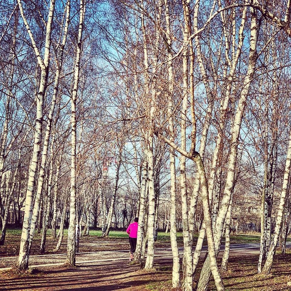 #paracegover Descrição para deficientes visuais: a imagem mostra uma mulher de casaco pink correndo por entre as árvores de um bosque seco. — at Mauerpark.